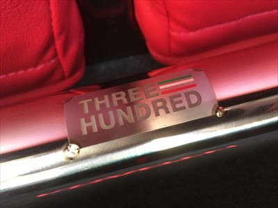 THREEHUNDRED トランクフレーム